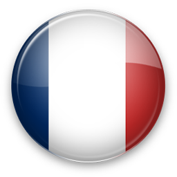Translate into French with Google